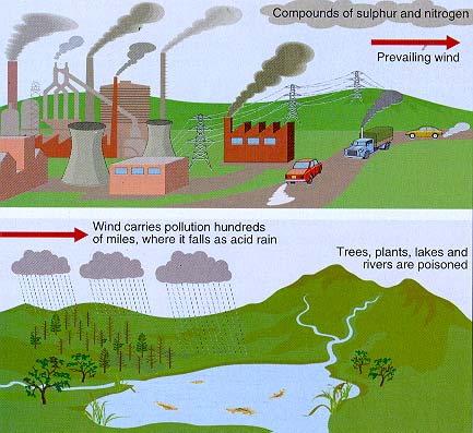 the explanation of the causes formation and effects of acid rain Essay on acid rain: definition, causes, adverse effects and control   combustion, the major sources of acid forming gases combine with the water in  the air.