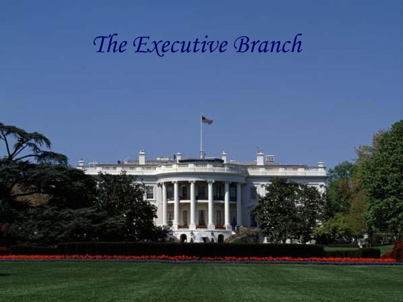 Executive Branch Quotes Quotesgram
