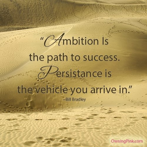Persistence Motivational Quotes: Persistence Success Quotes. QuotesGram