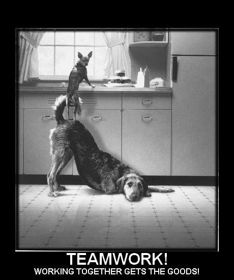 Humor Inspirational Quotes: Motivational Quotes For Teamwork In Workplace. QuotesGram