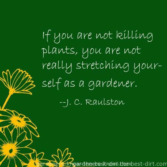 Birthday Quotes From The Quote Garden: Best Garden Quotes. QuotesGram