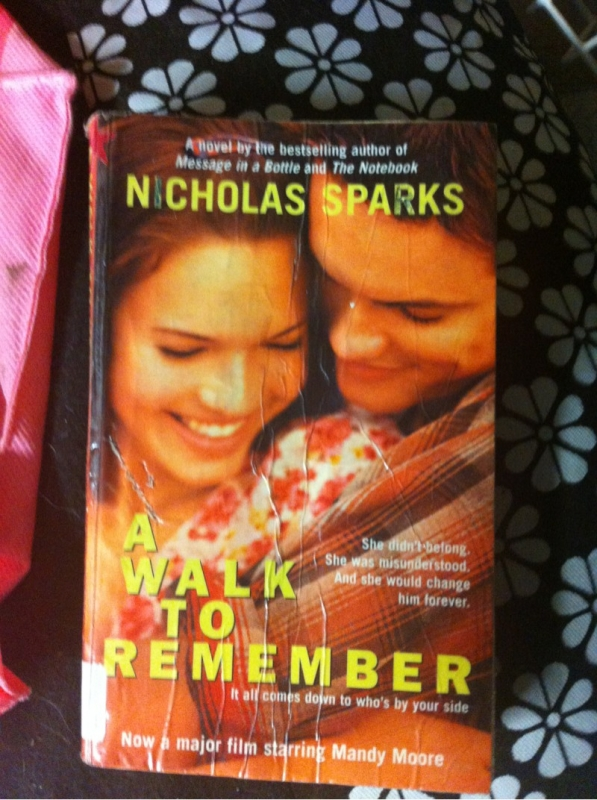 a walk to remember theme essay Novelguide - a walk to remember basic free book notes includes novel summary, character profiles, theme analysis, metaphor analysis, biography, and top offers reading group guides containing a brief summary and discussion questions written by the publisher most helpful for thinking of essay topics.