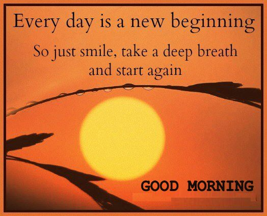 Each New Day Is A New Opportunity To Improve Yourself: A Brand New Day Quotes. QuotesGram