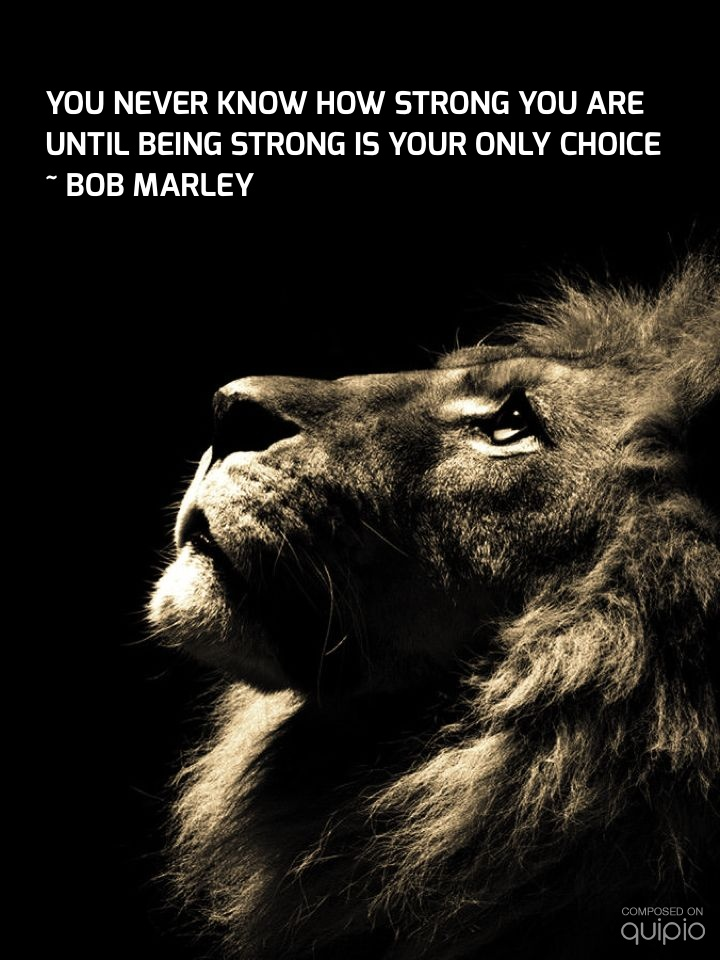 Motivational Quotes With Lion Images: Strong Lion Quotes Wallpapers. QuotesGram