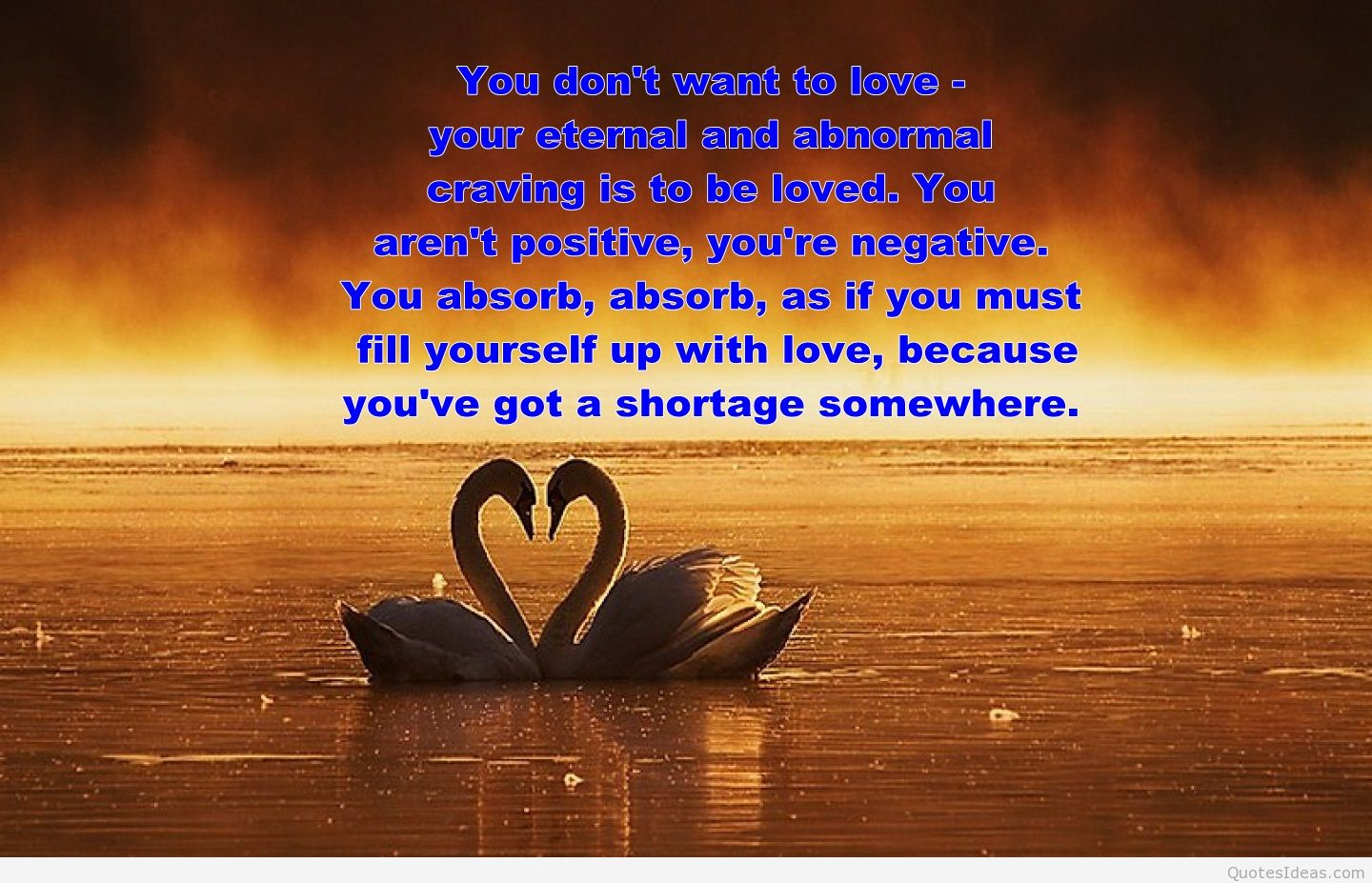 Quotes About Love: Quotes About Love And Swans. QuotesGram