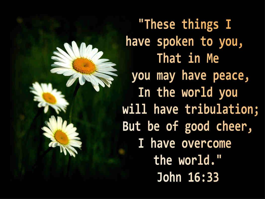 Scriptures Quotes. QuotesGram