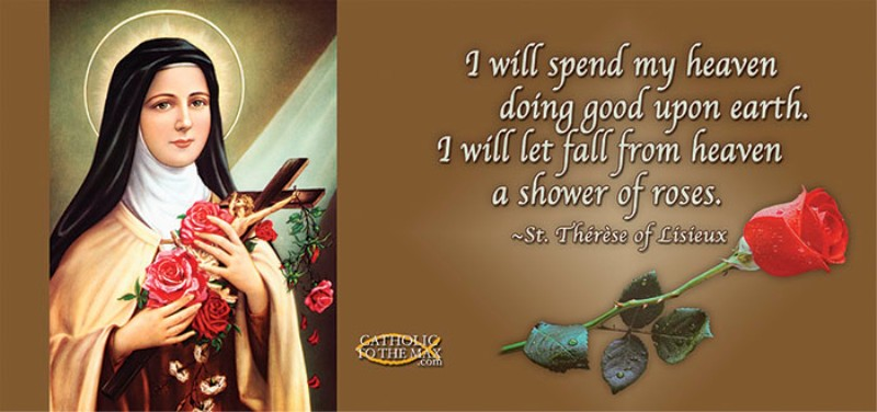 Quotes St Therese Little Flower Quotesgram