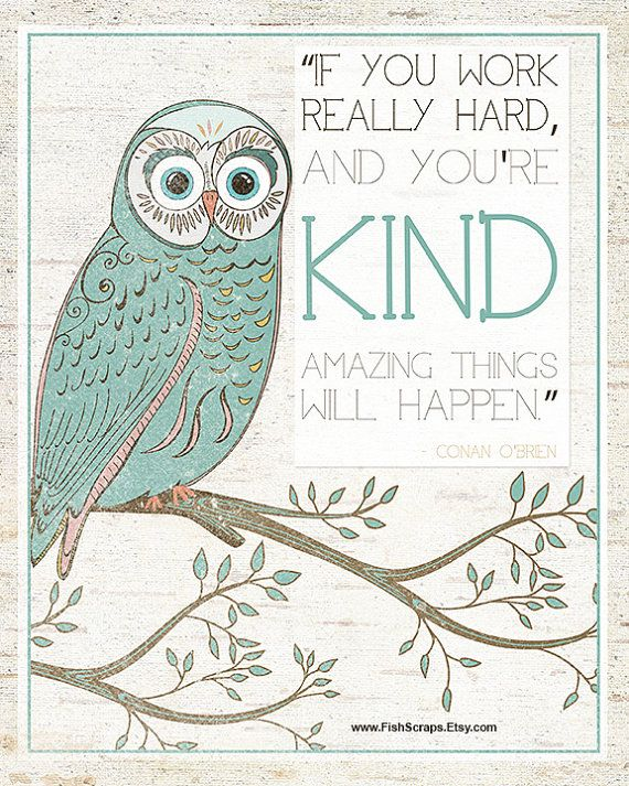 inspirational quotes owls quotesgram
