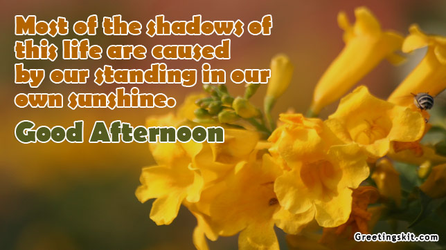 Good Afternoon Quotes For Him: Good Afternoon Quotes Facebook. QuotesGram