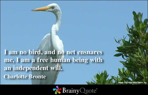 Quotes About Love And Birds Quotesgram: Bird Quotes And Poems. QuotesGram