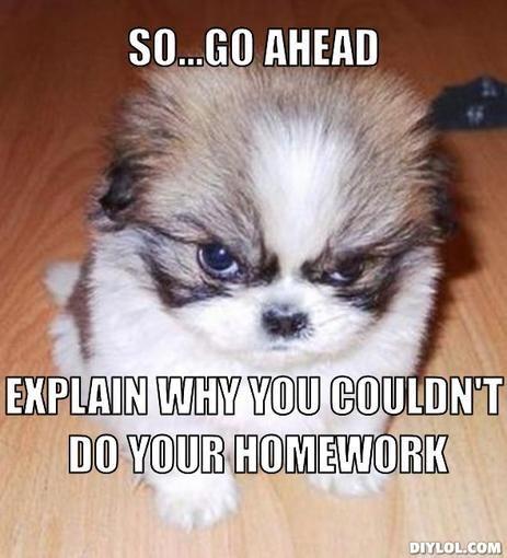 Do you do your homework every day