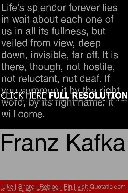 the good in every human in the metamorphosis by franz kafka Need help on themes in franz kafka's the metamorphosis detailed explanations, analysis, and citation info for every important quote on litcharts.