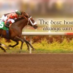 Horse Racing Sayings