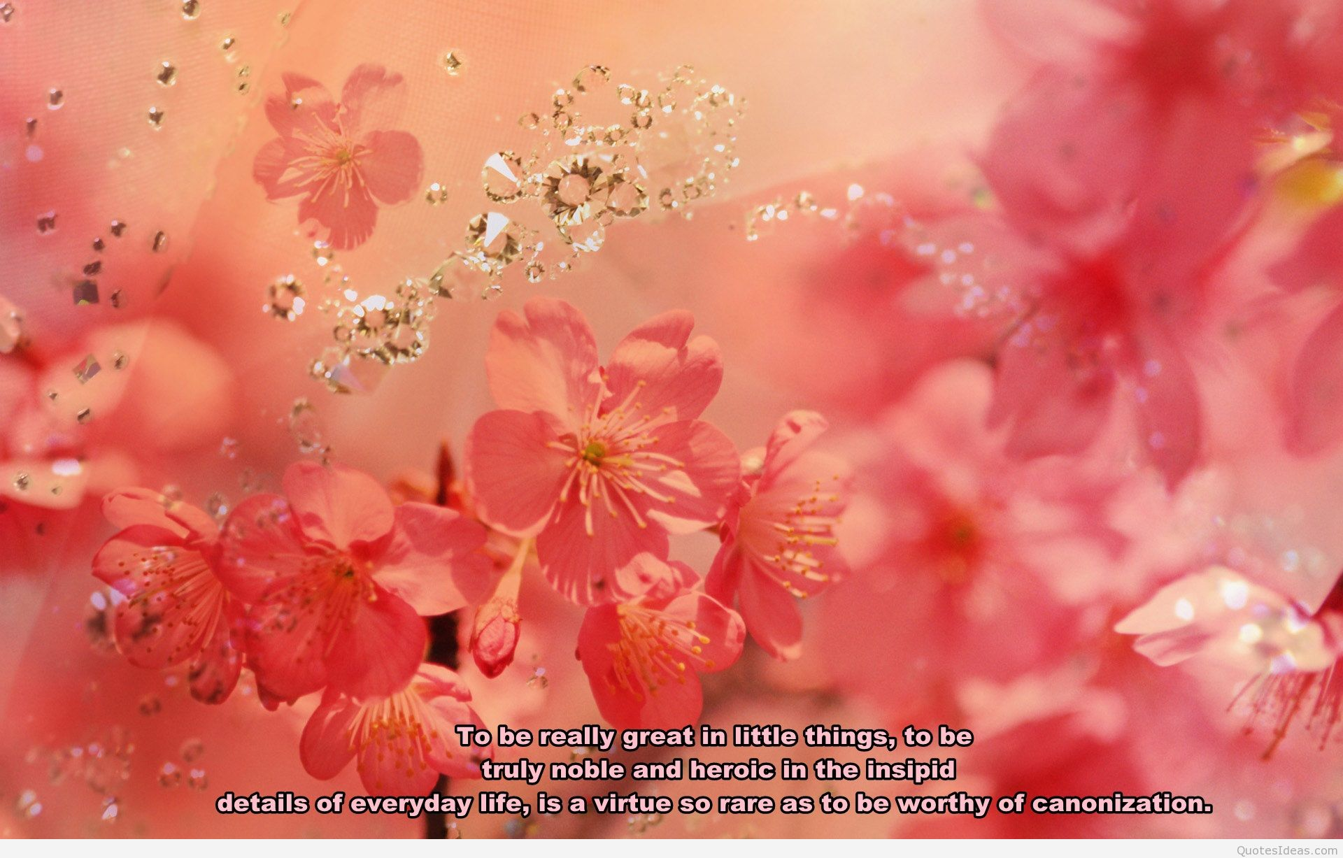 Great Flower Quotes QuotesGram