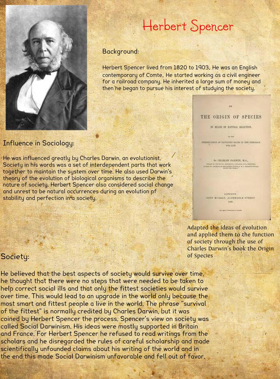 herbert spencer social organism essay