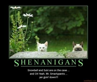 Done Shenanigans Quotes. QuotesGram