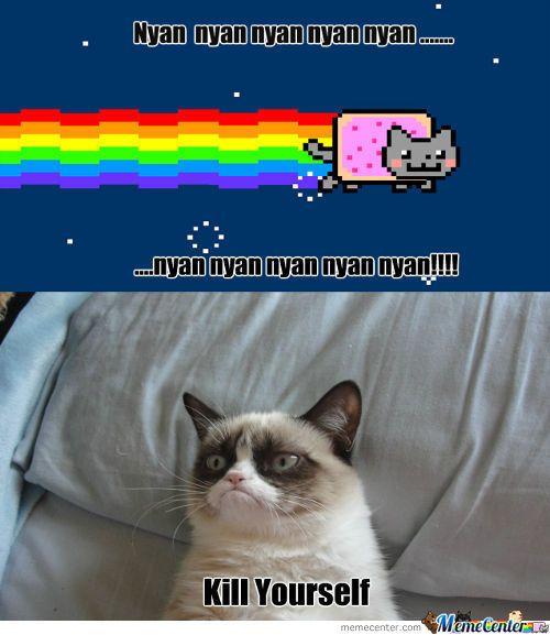 Senior Cat Quotes: Fire Grumpy Cat Quotes. QuotesGram