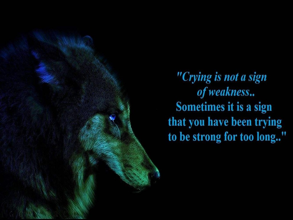 Quotes About Crying Wolf. QuotesGram