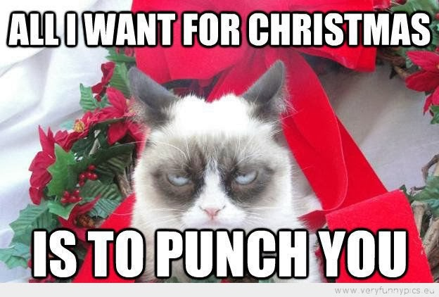 Christmas Grumpy Cat Quotes. QuotesGram