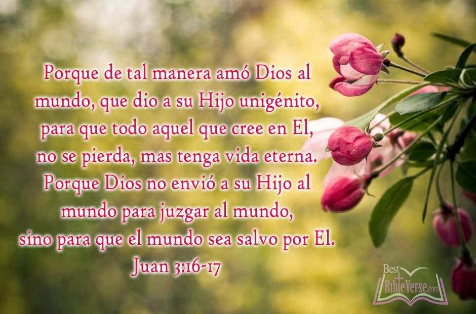 Bible Verses About Love In Spanish : Christian Bible Quotes In Spanish. QuotesGram