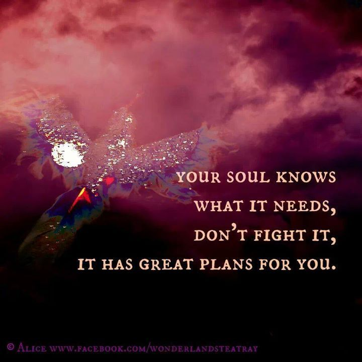 Pure Soul Pic Pinterest: Quotes On Healing Your Soul. QuotesGram