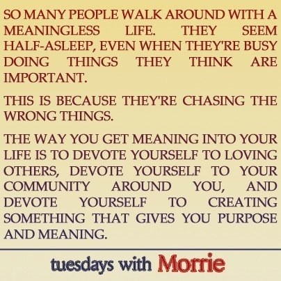 tuesdays with morrie life lessons essay Lessons learned from tuesdays with morrie 6 pages 1559 words november 2014 saved essays save your essays here so you can locate them quickly.