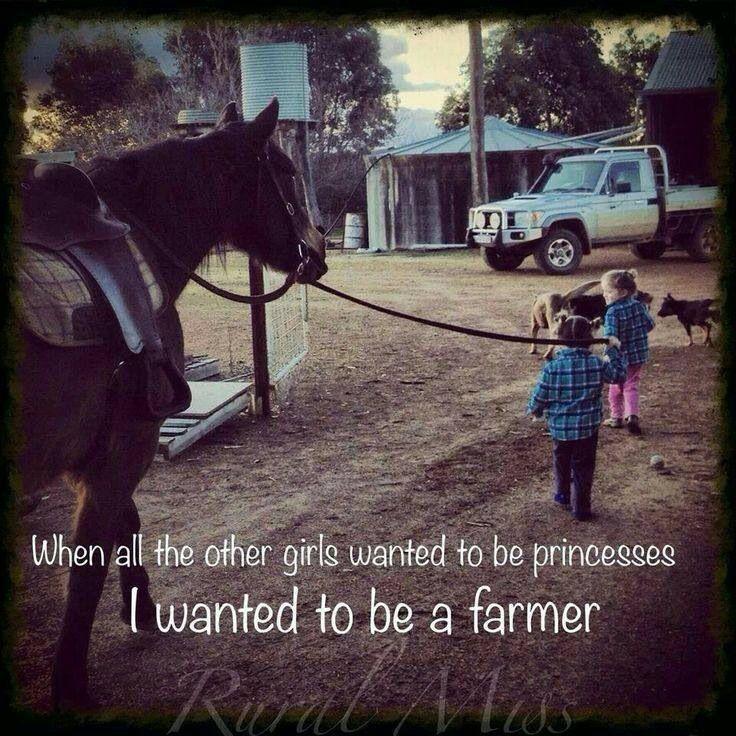 Good Animal Farm Quotes. QuotesGram