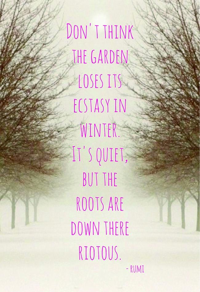winter solstice poems quotes  quotesgram