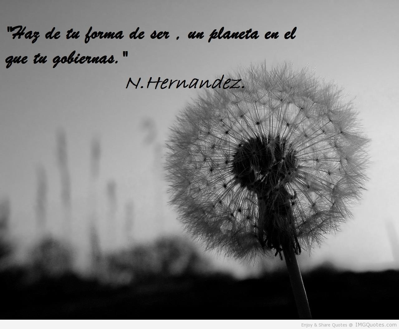 quotes about life in spanish - photo #33