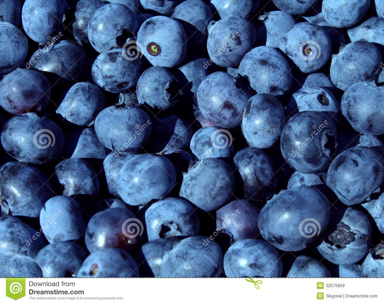 Blueberry Fruit Funny Quotes Ab...