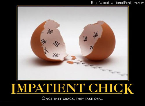 Chicken Egg Or The Quotes Quotesgram: Impatience Funny Quotes. QuotesGram