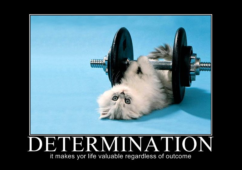 Monday Metavators: Sports Quotes About Determination. QuotesGram