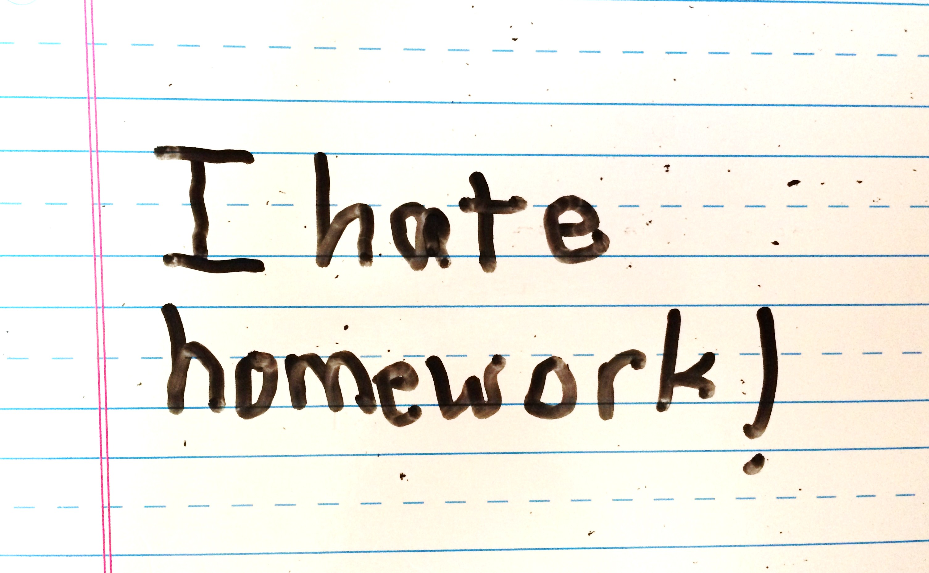 I Hate Technology Quotes: I Hate Homework Quotes. QuotesGram