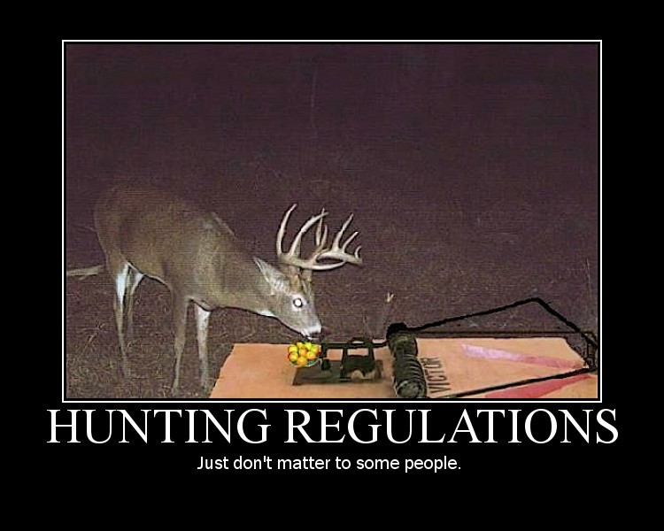 funny quotes about hunting quotesgram