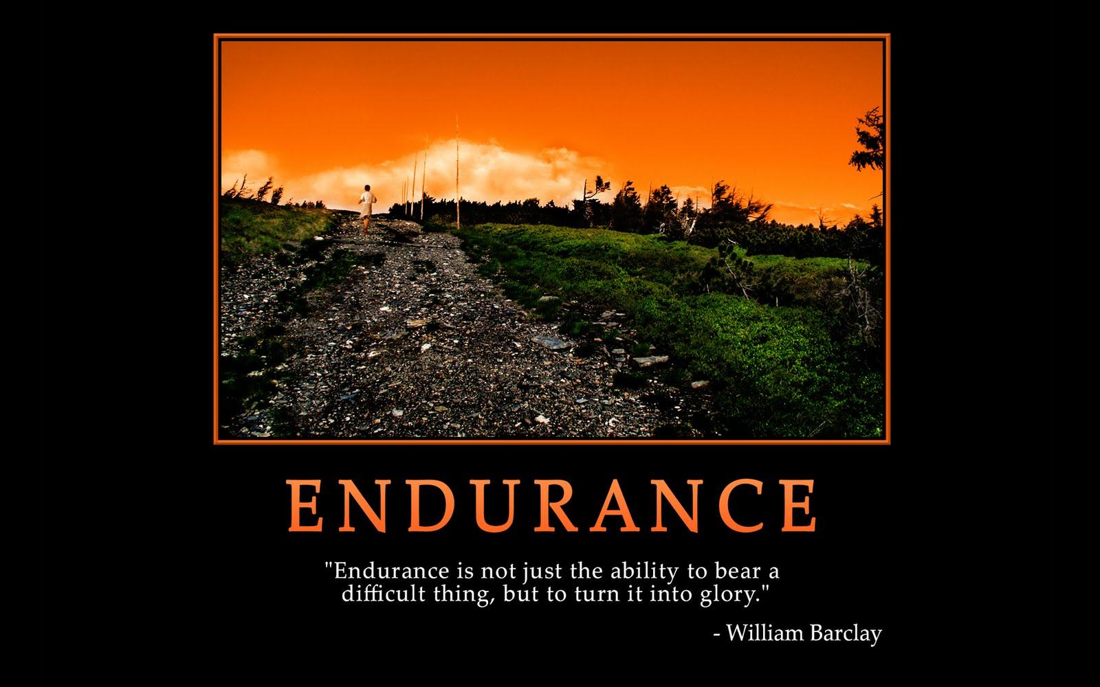 Endurance Quotes Inspirational Quotesgram