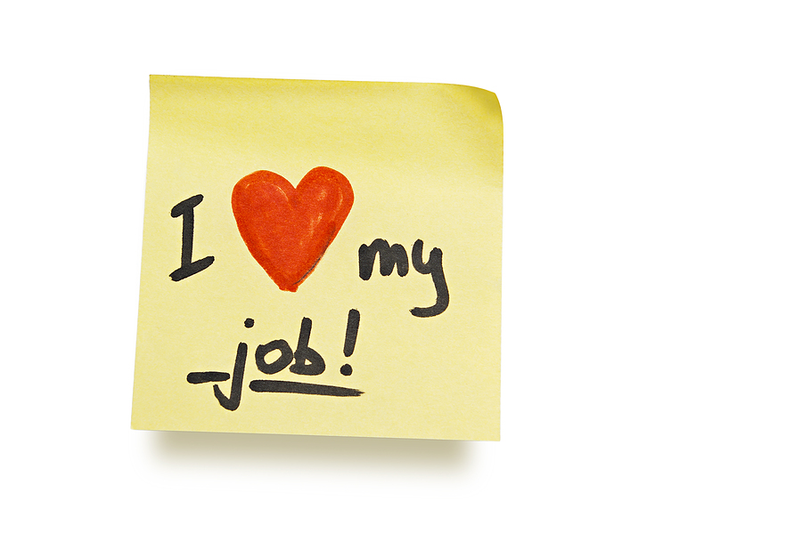 Your dream job now! =