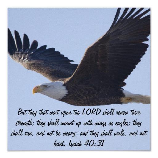 eagle quotes love  quotesgram