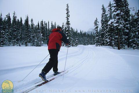 California's Best Skiing & Snowboarding | Mammoth Mountain