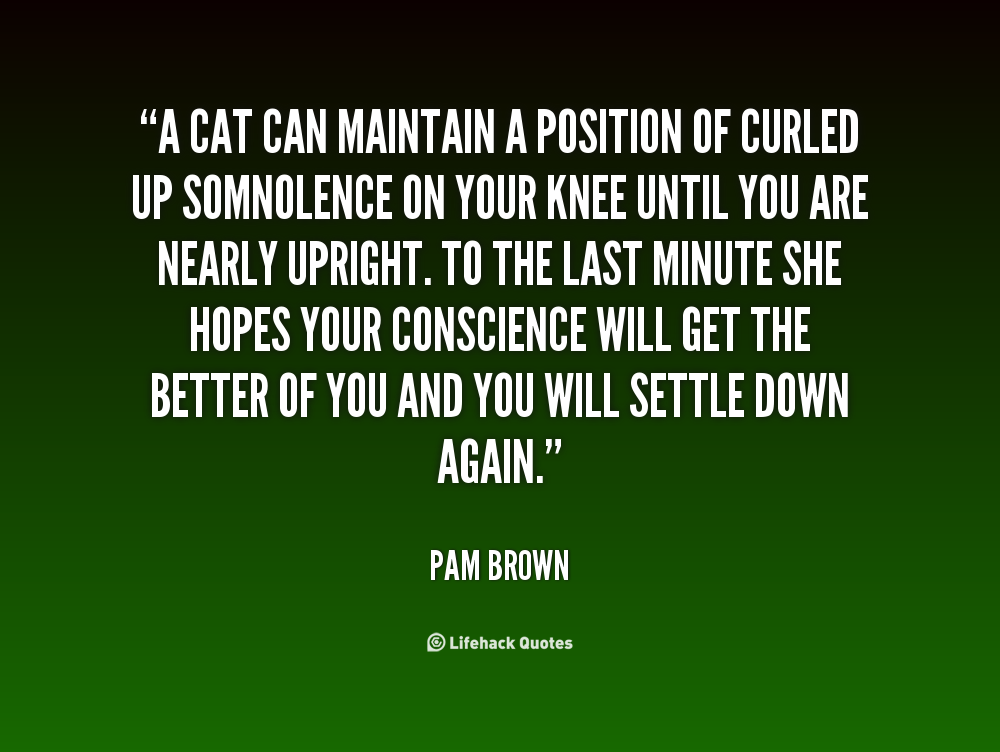 Pam Brown Cat Quote A Cat Can Maintain