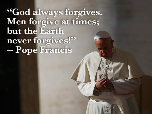 Quotes Pope Francis And Animals Quotesgram: St Francis Quotes On Nature. QuotesGram
