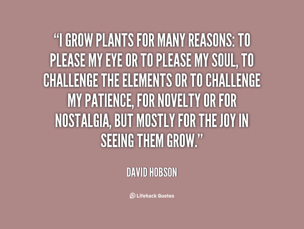 Quotes About Growing Plants Quotesgram Math Wallpaper Golden Find Free HD for Desktop [pastnedes.tk]