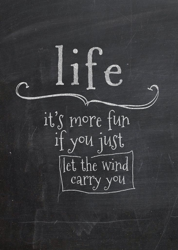 Its Windy Quotes Funny. QuotesGram