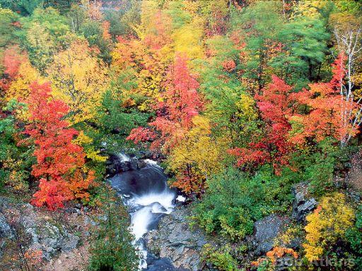 Quotes About Acadia Maine: Autumn Foliage And Quotes. QuotesGram
