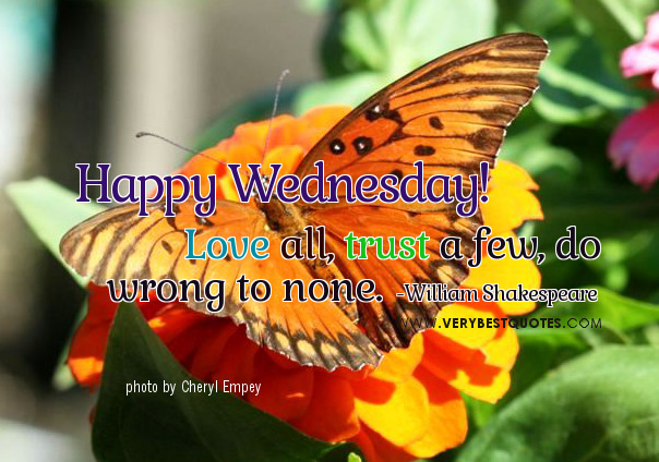 Good Morning Wednesday Images And Quotes : Wonderful wednesday quotes quotesgram
