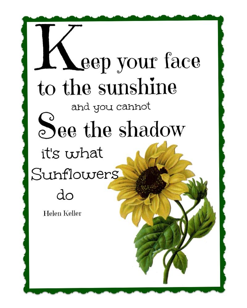 Sunflower Greeting Card Inspirational Blank Inside Sympathy Helen Keller Sunflowers Quote
