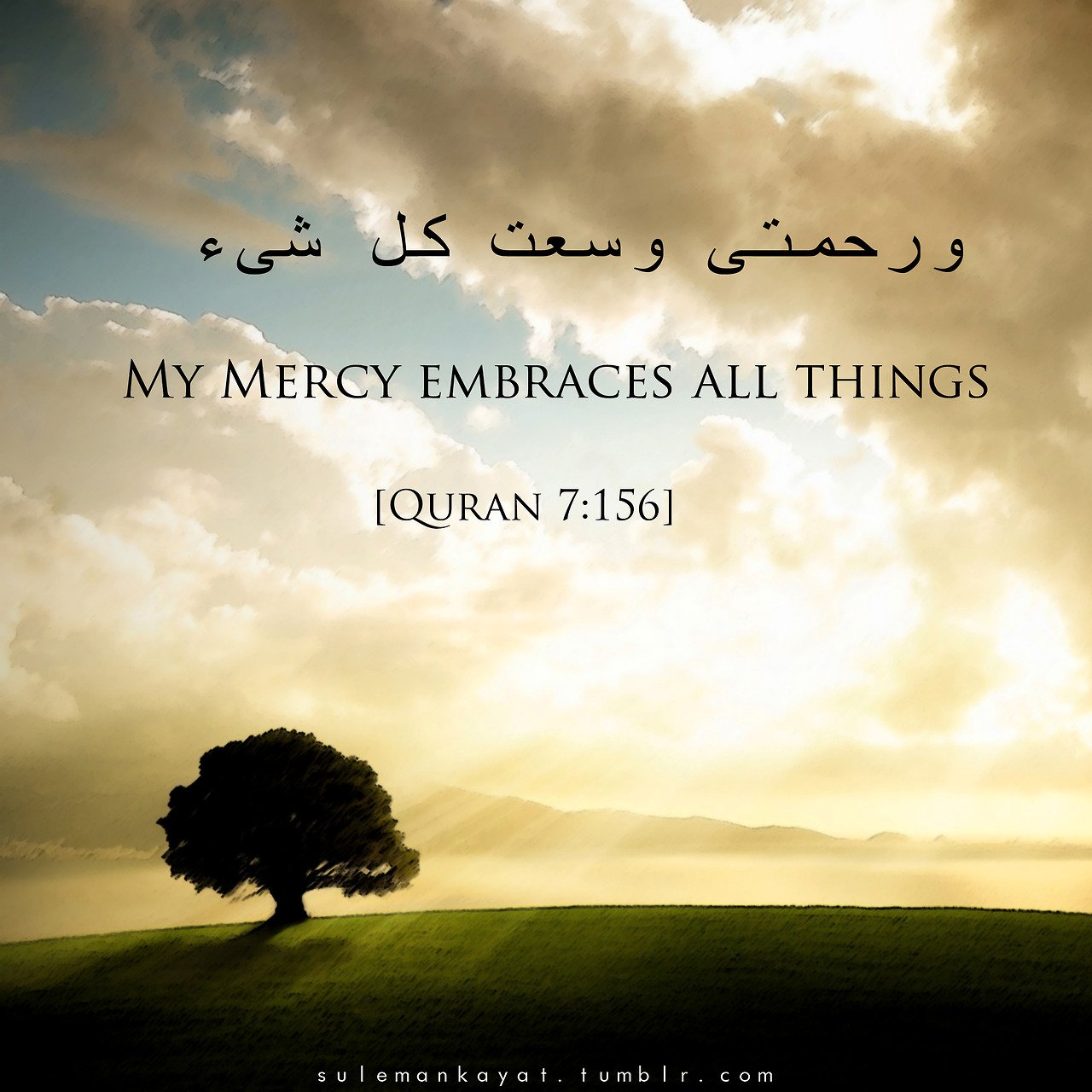Muslim And Allah Quotes About Mankind. QuotesGram