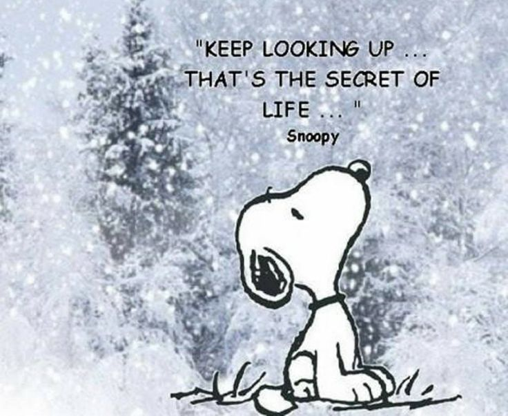 Cute Winter Quotes And Sayings. QuotesGram