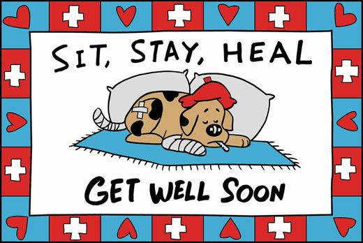 Get Well Soon My Sister Quotes: Get Well Soon Brother Quotes. QuotesGram