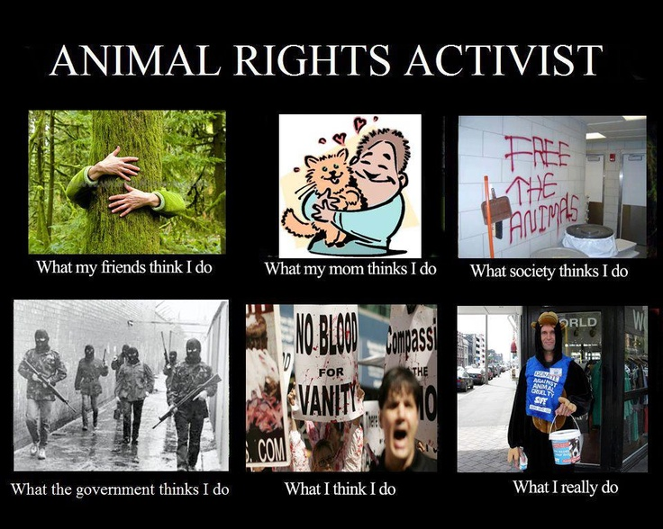 Animal Rights Activists Quotes. QuotesGram