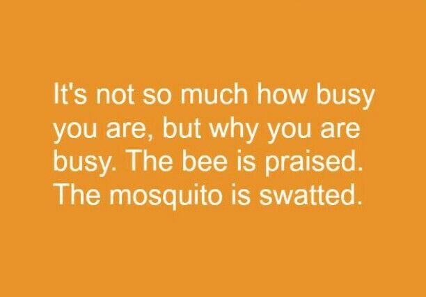 Bee Quotes: Bee Inspirational Quotes. QuotesGram